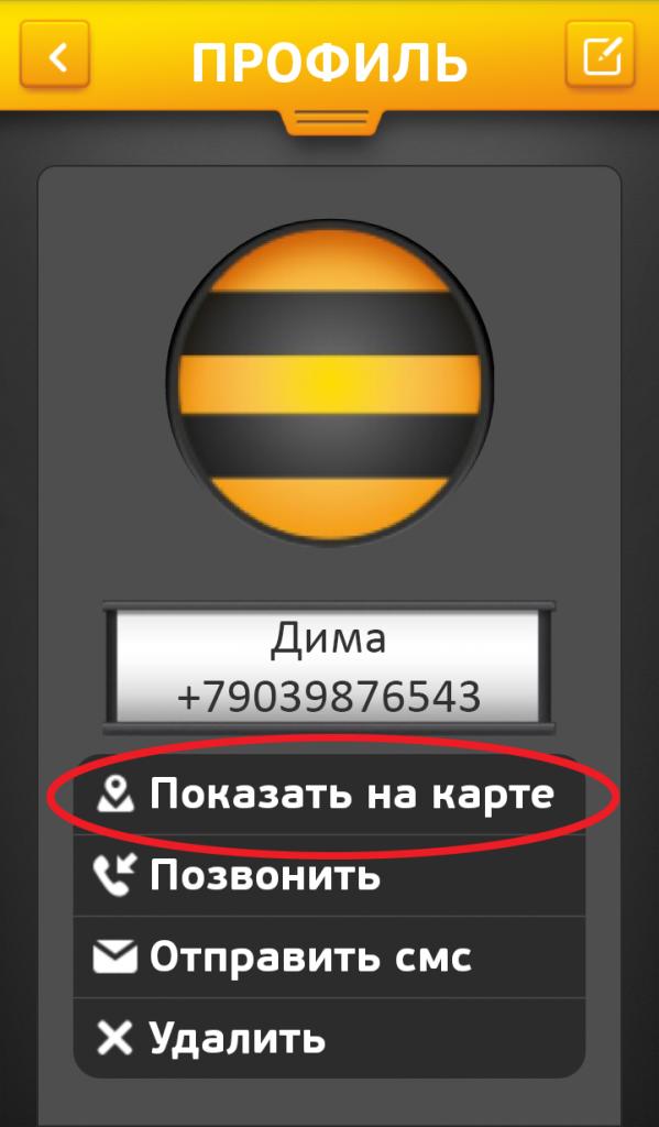 Где находится номер телефона билайн